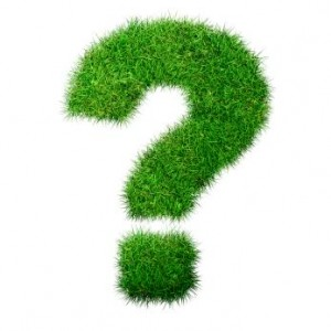 Green-Question-300x300